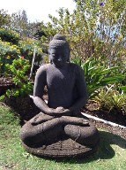 maui_yoga_resort